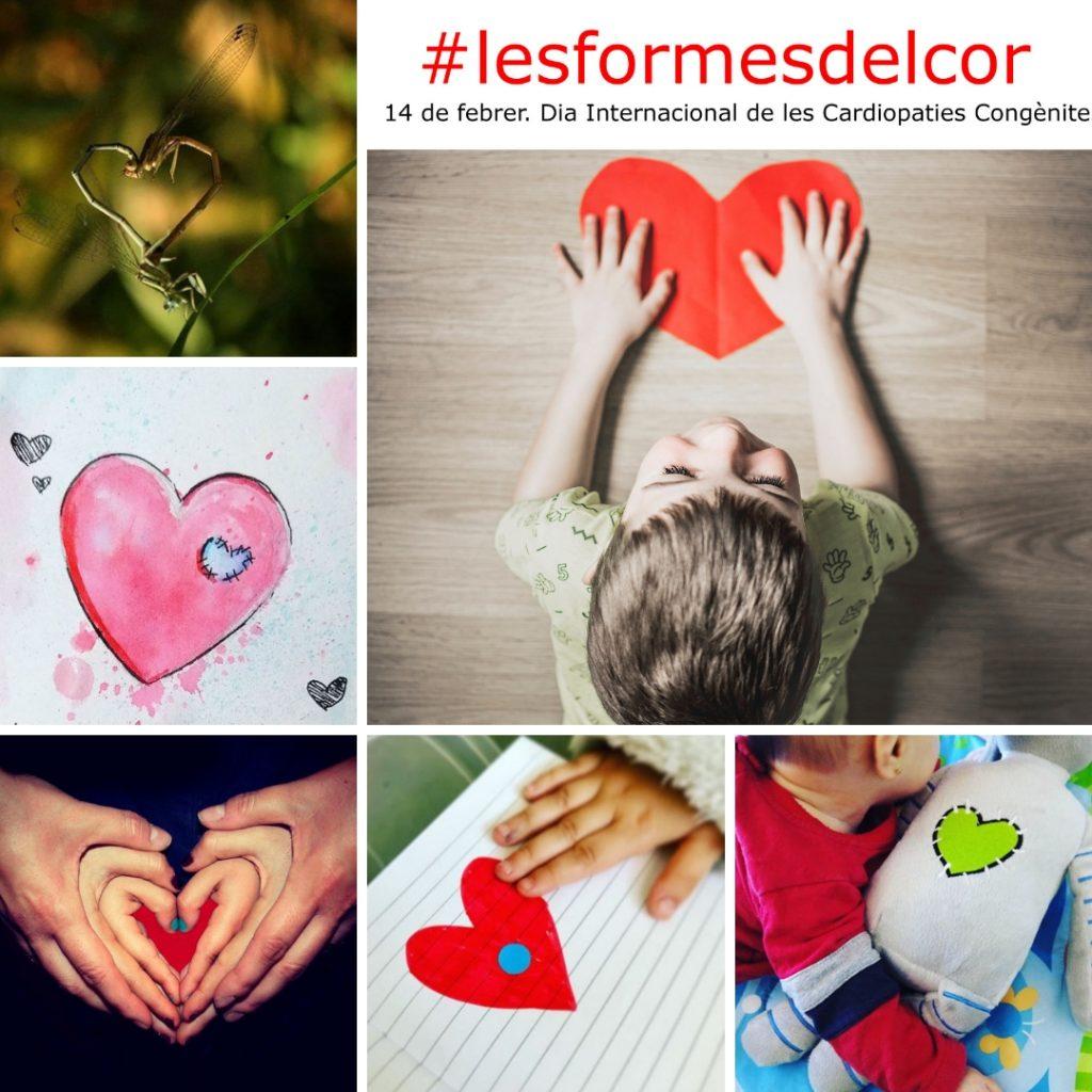 #lesformesdelcor finalistes