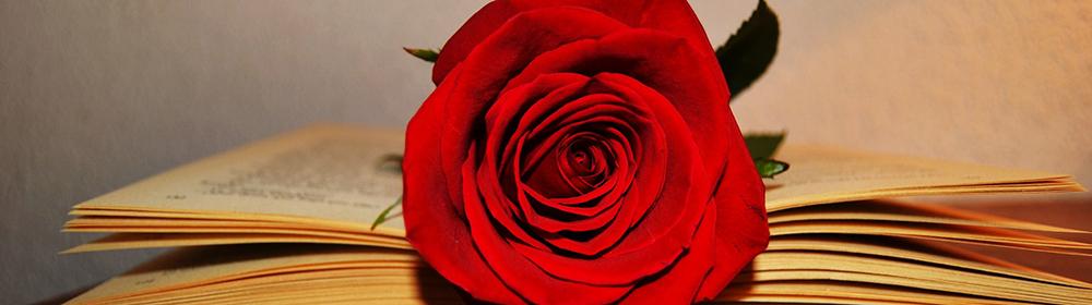 Diada de Sant Jordi AACIC