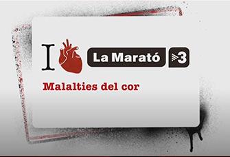 La Marató 2014 Malalties del Cor